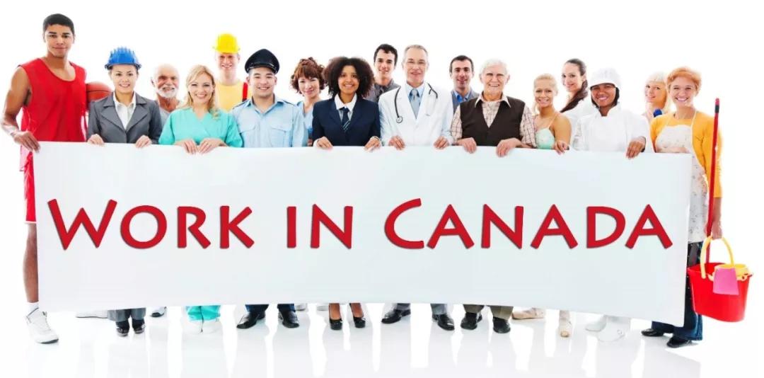 加拿大留学后找工作攻略!